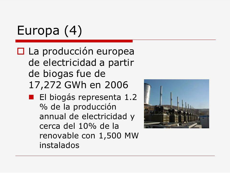 Europa (4) La producción europea de electricidad a partir de biogas fue de 17,272 GWh en 2006.