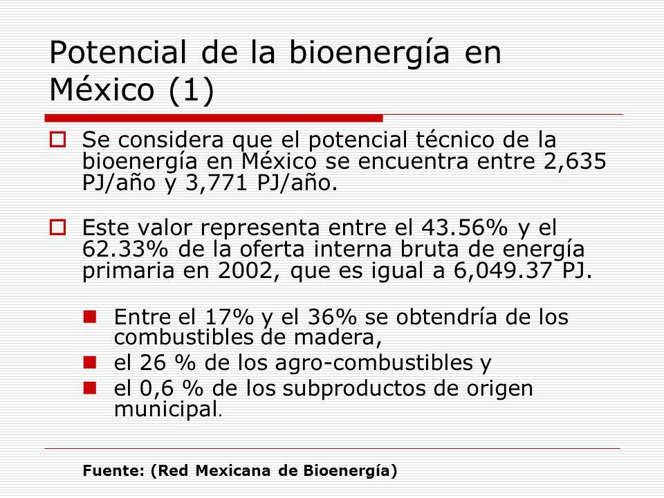 Potencial de la bioenergía en México (1)