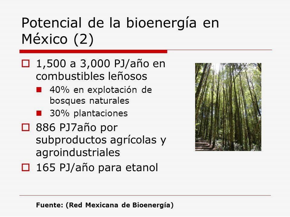 Potencial de la bioenergía en México (2)