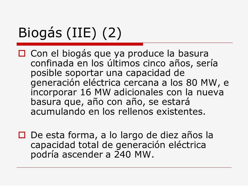 Biogás (IIE) (2)