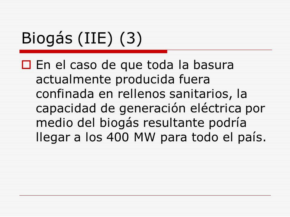 Biogás (IIE) (3)
