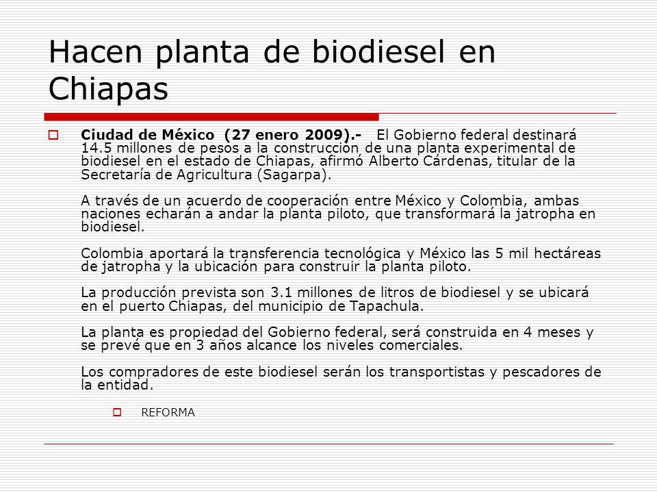 Hacen planta de biodiesel en Chiapas