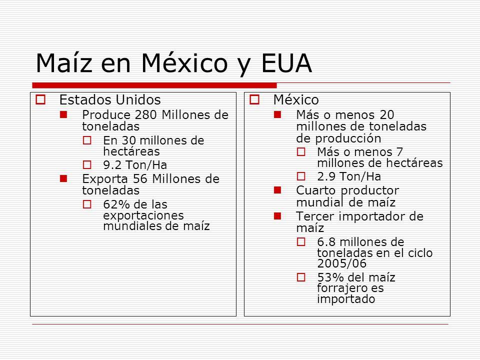 Maíz en México y EUA Estados Unidos México