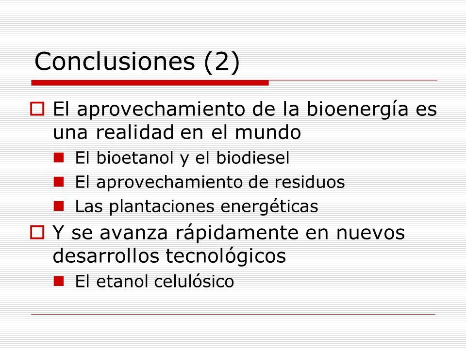 Conclusiones (2) El aprovechamiento de la bioenergía es una realidad en el mundo. El bioetanol y el biodiesel.