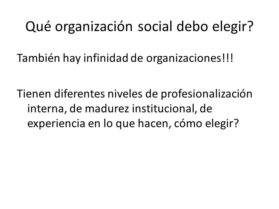 Qué organización social debo elegir