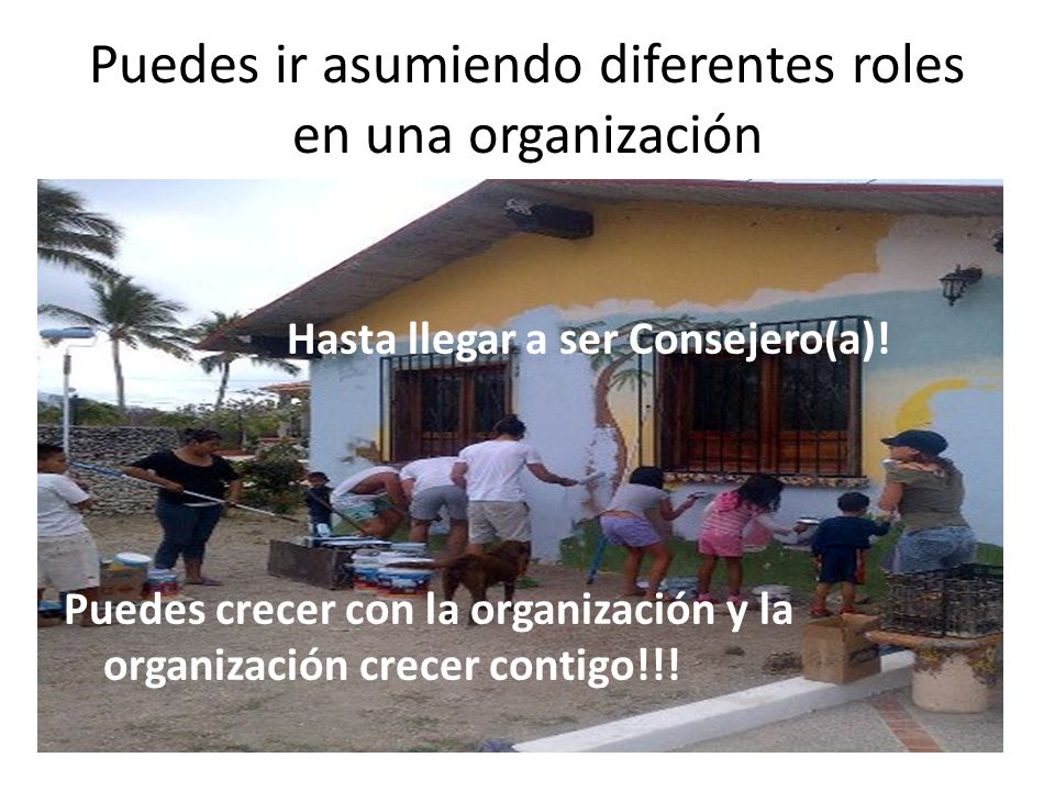 Puedes ir asumiendo diferentes roles en una organización