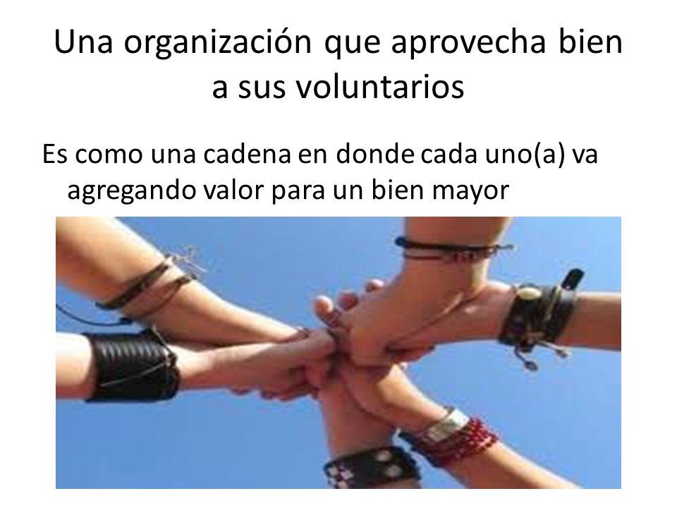 Una organización que aprovecha bien a sus voluntarios