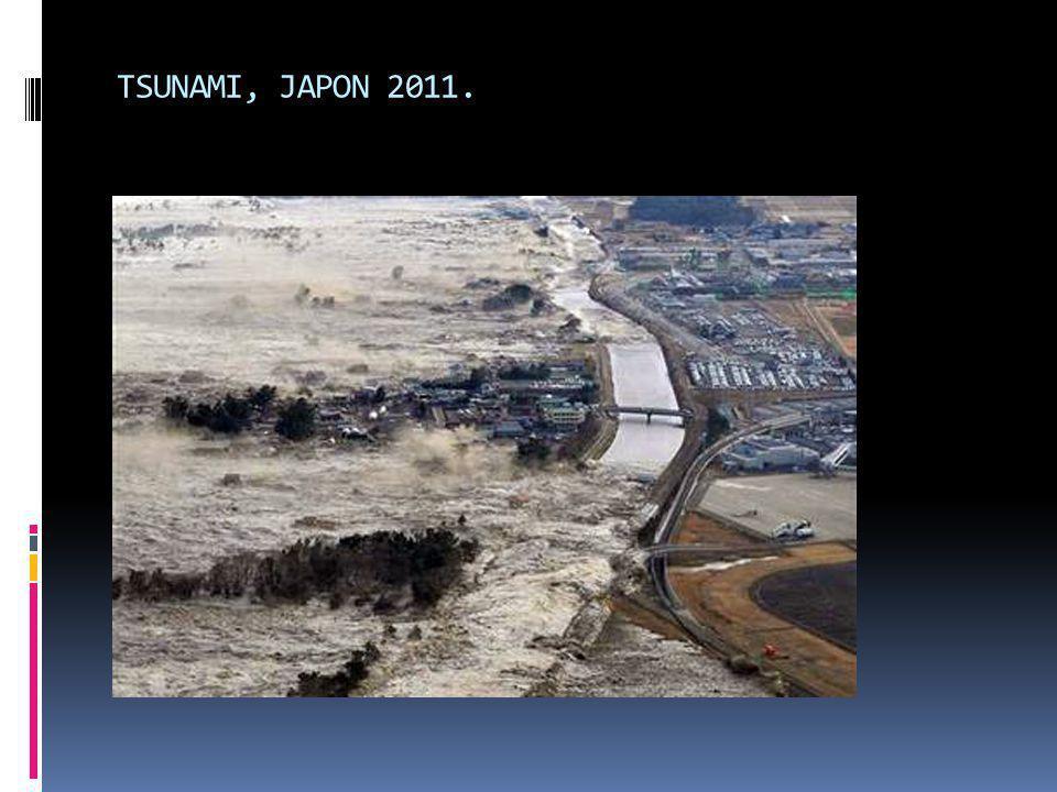 TSUNAMI, JAPON 2011.