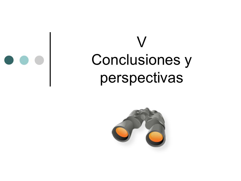 V Conclusiones y perspectivas