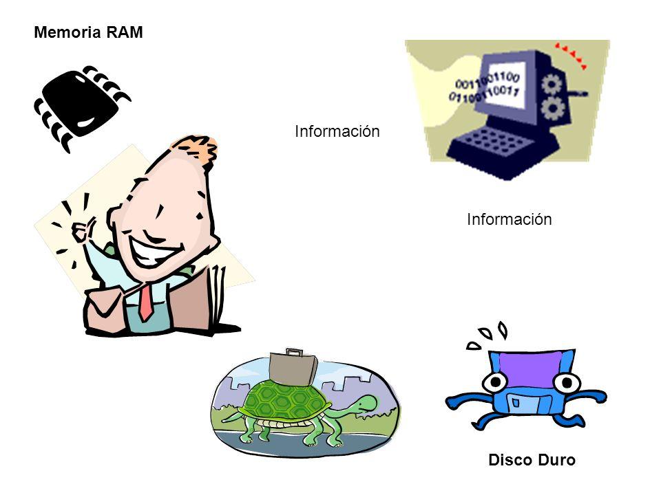 Memoria RAM Información Información Disco Duro
