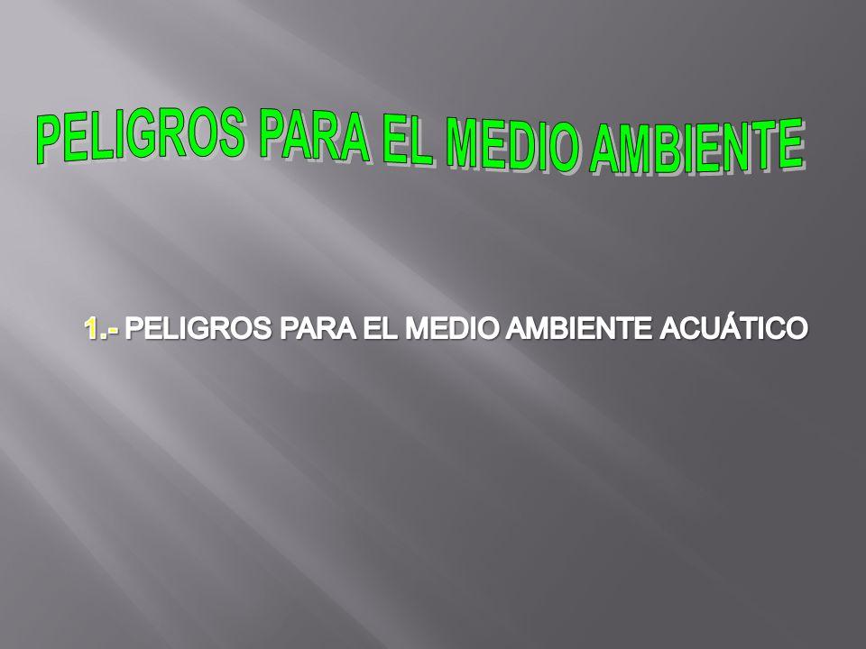 PELIGROS PARA EL MEDIO AMBIENTE
