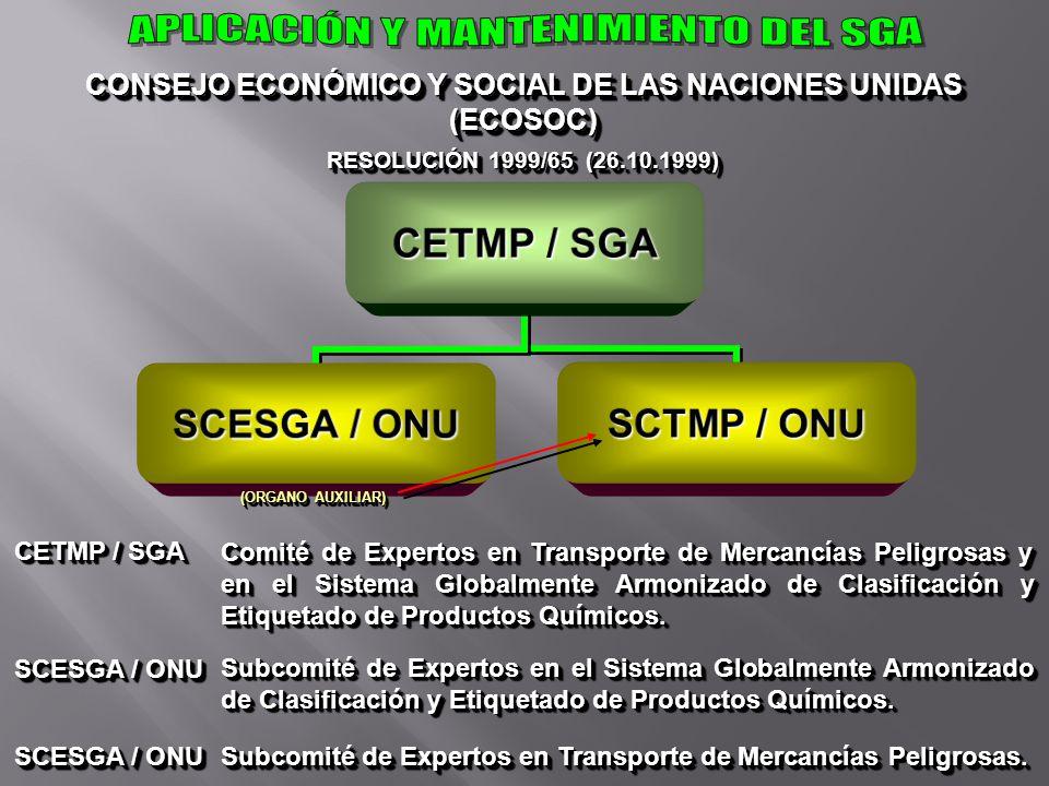 CONSEJO ECONÓMICO Y SOCIAL DE LAS NACIONES UNIDAS