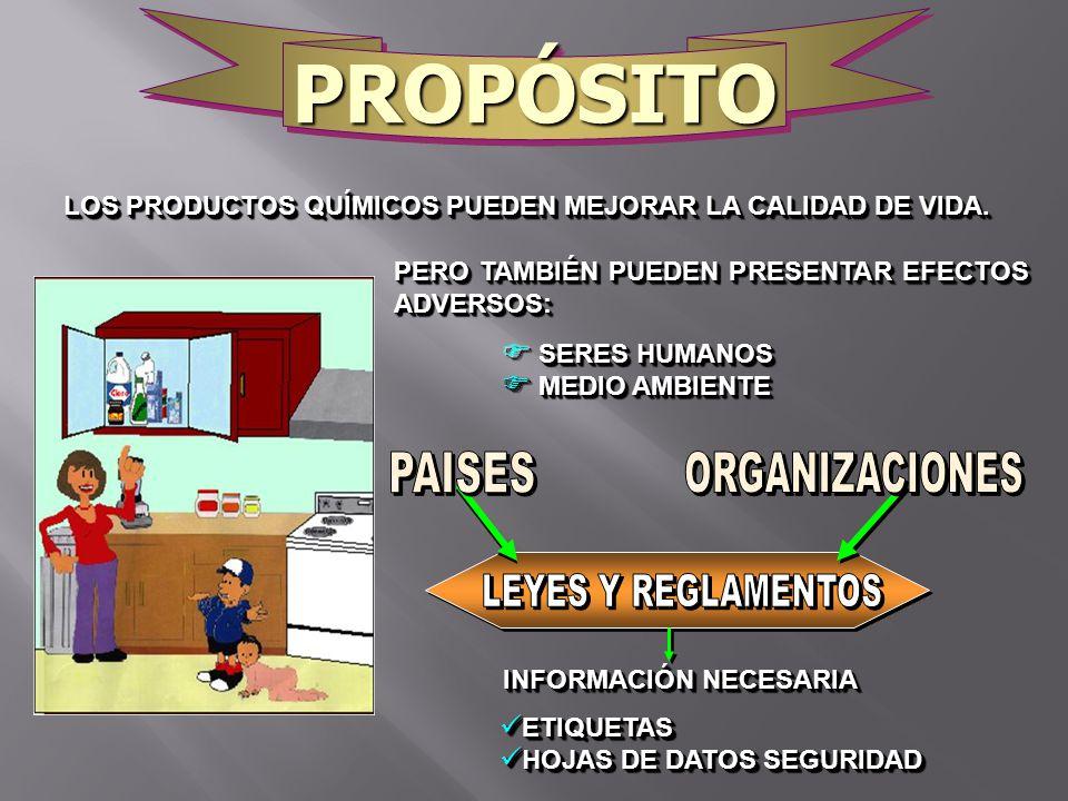 PROPÓSITO PAISES ORGANIZACIONES LEYES Y REGLAMENTOS