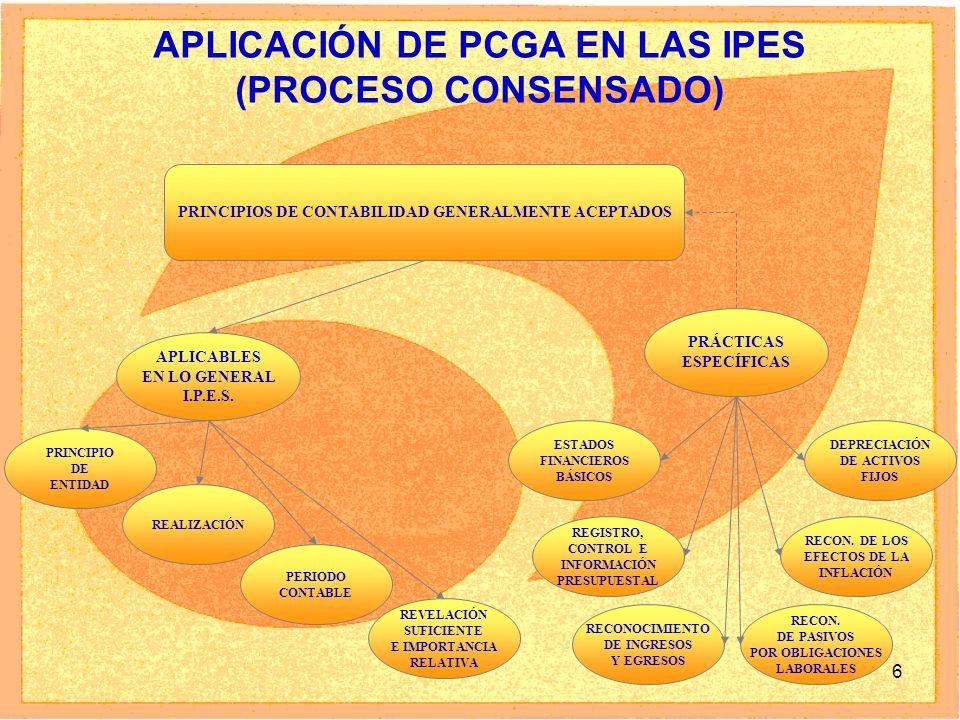 APLICACIÓN DE PCGA EN LAS IPES (PROCESO CONSENSADO)