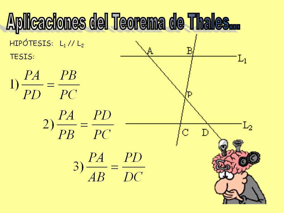 Aplicaciones del Teorema de Thales…