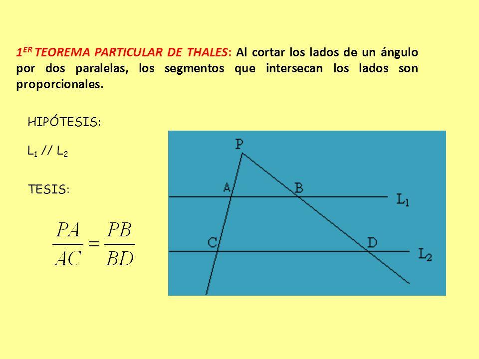1ER TEOREMA PARTICULAR DE THALES: Al cortar los lados de un ángulo por dos paralelas, los segmentos que intersecan los lados son proporcionales.
