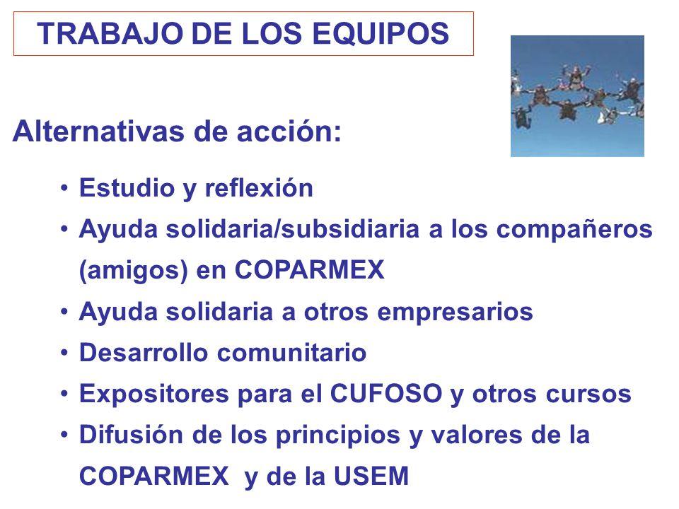 Alternativas de acción:
