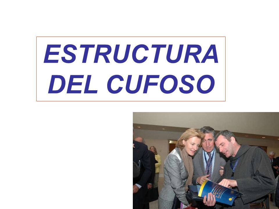 ESTRUCTURA DEL CUFOSO