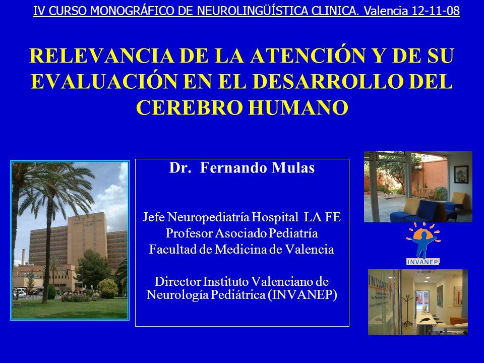 IV CURSO MONOGRÁFICO DE NEUROLINGÜÍSTICA CLINICA. Valencia 12-11-08