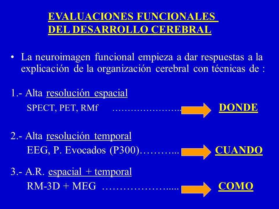 EVALUACIONES FUNCIONALES DEL DESARROLLO CEREBRAL