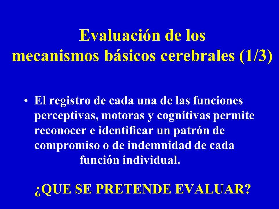 Evaluación de los mecanismos básicos cerebrales (1/3)