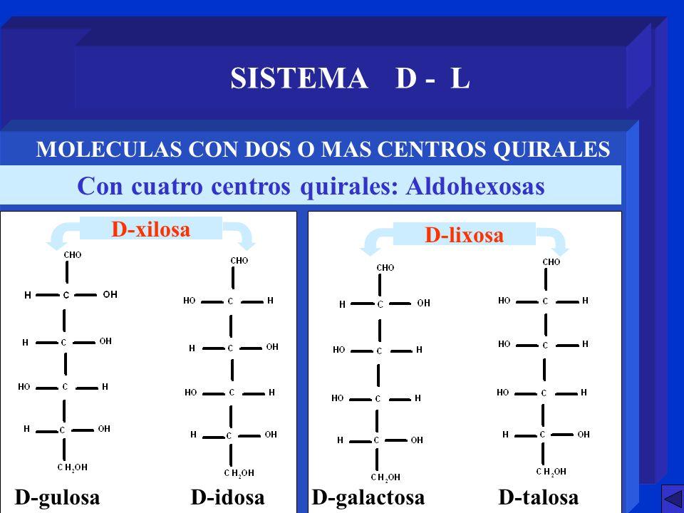 SISTEMA D - L Con cuatro centros quirales: Aldohexosas