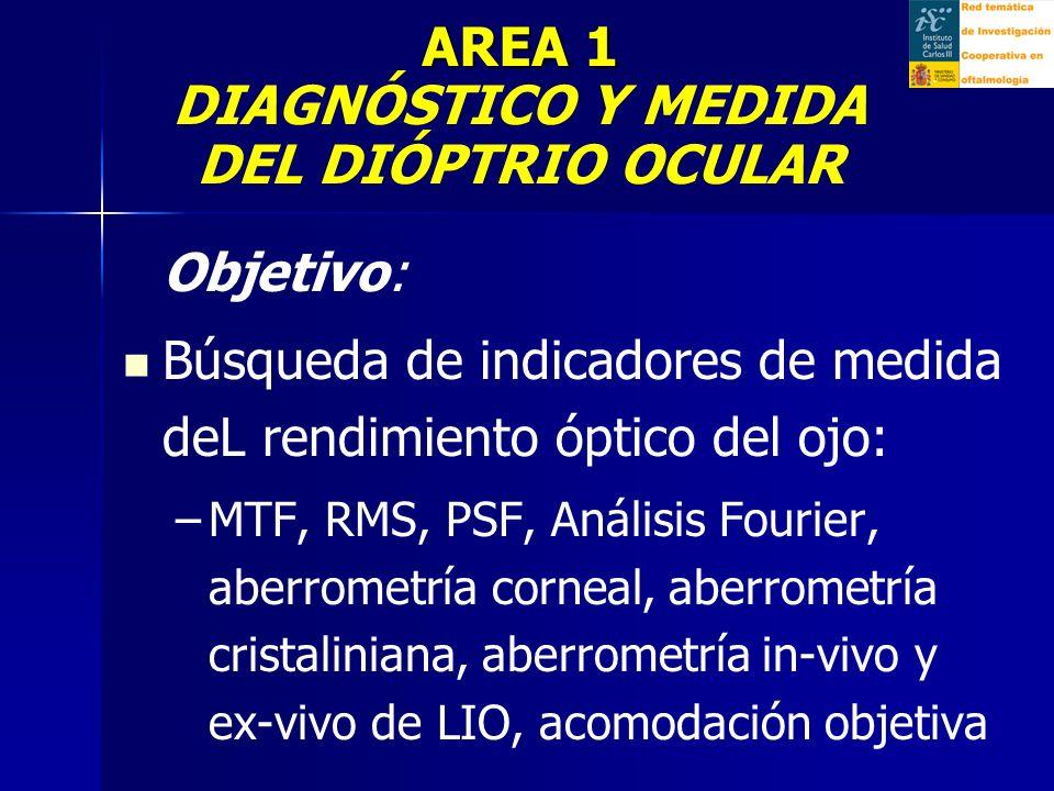 AREA 1 DIAGNÓSTICO Y MEDIDA