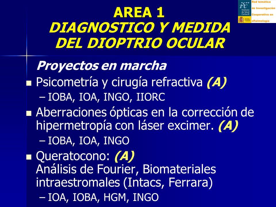 AREA 1 DIAGNOSTICO Y MEDIDA