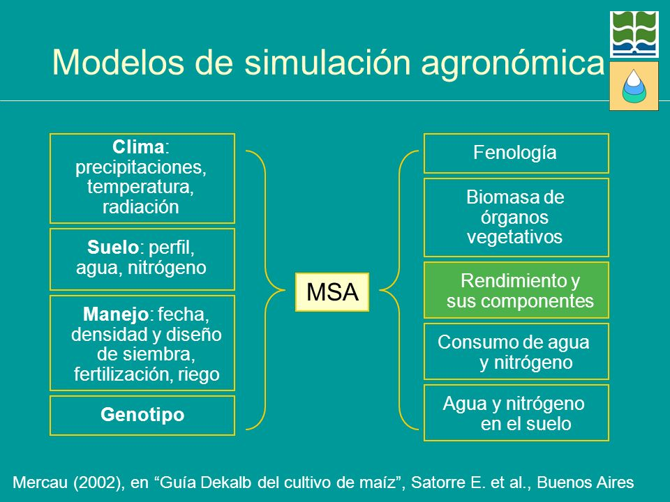 Modelos de simulación agronómica