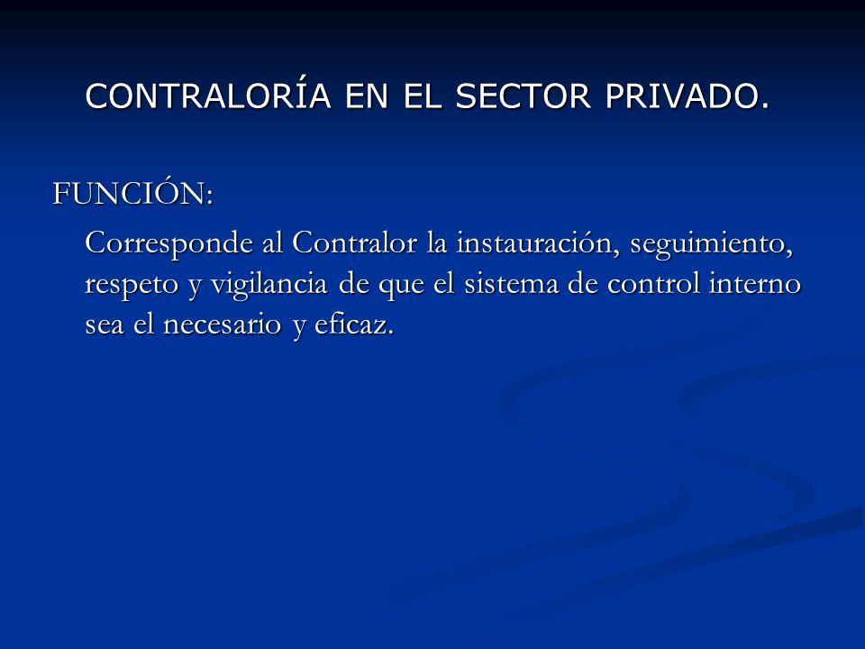 CONTRALORÍA EN EL SECTOR PRIVADO.