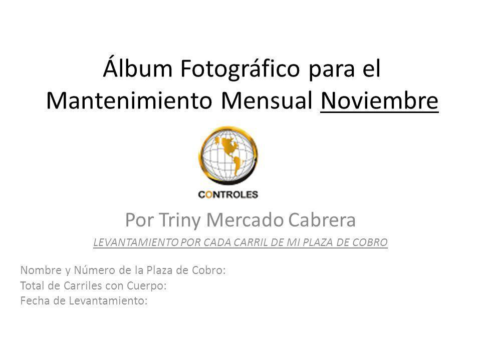 Álbum Fotográfico para el Mantenimiento Mensual Noviembre
