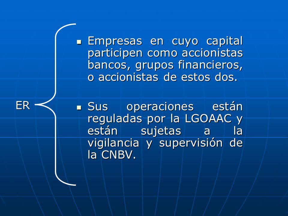 Empresas en cuyo capital participen como accionistas bancos, grupos financieros, o accionistas de estos dos.