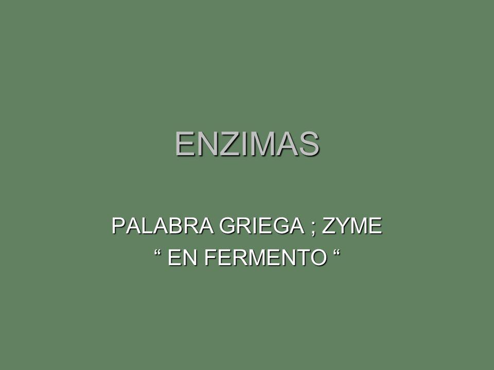 PALABRA GRIEGA ; ZYME EN FERMENTO