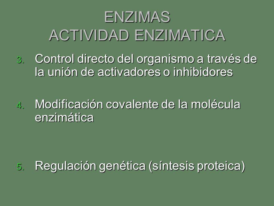 ENZIMAS ACTIVIDAD ENZIMATICA