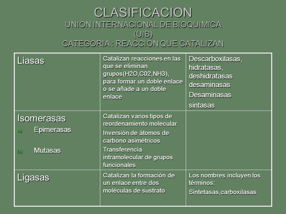 CLASIFICACION UNION INTERNACIONAL DE BIOQUIMICA (UIB) CATEGORIA : REACCION QUE CATALIZAN
