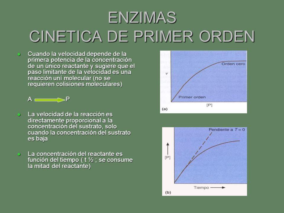 ENZIMAS CINETICA DE PRIMER ORDEN