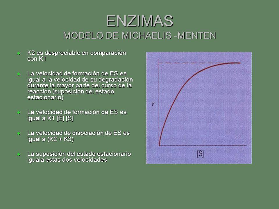 ENZIMAS MODELO DE MICHAELIS -MENTEN