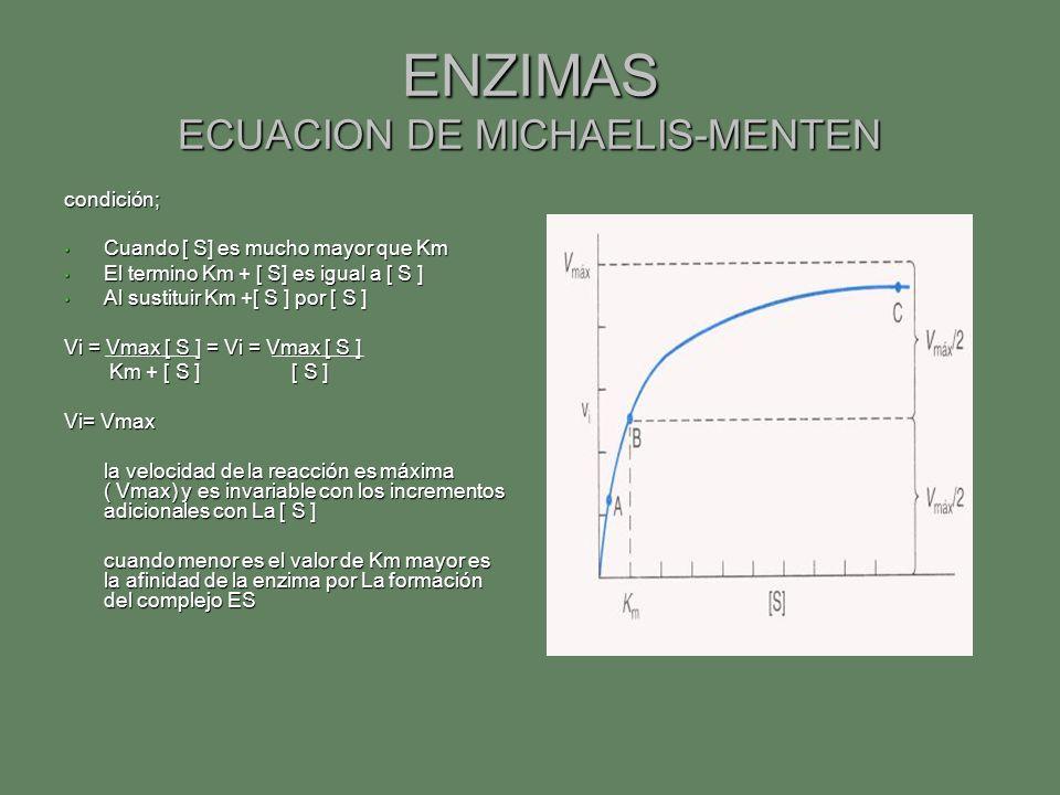 ENZIMAS ECUACION DE MICHAELIS-MENTEN