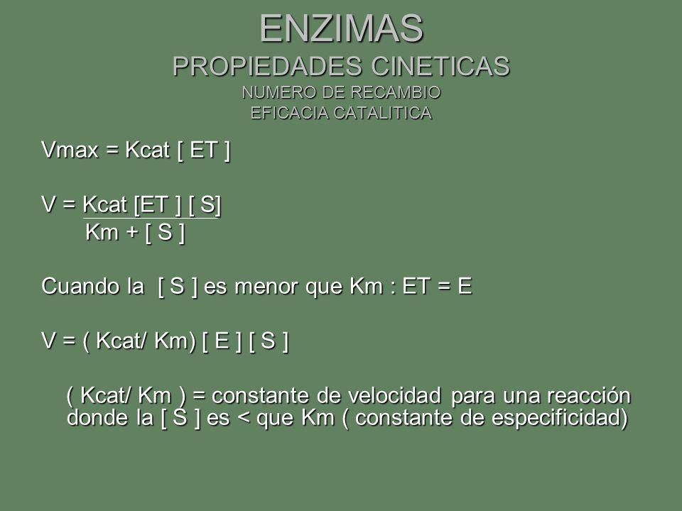 ENZIMAS PROPIEDADES CINETICAS NUMERO DE RECAMBIO EFICACIA CATALITICA