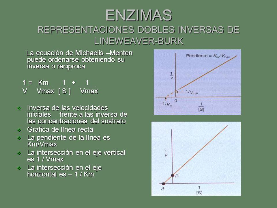 ENZIMAS REPRESENTACIONES DOBLES INVERSAS DE LINEWEAVER-BURK
