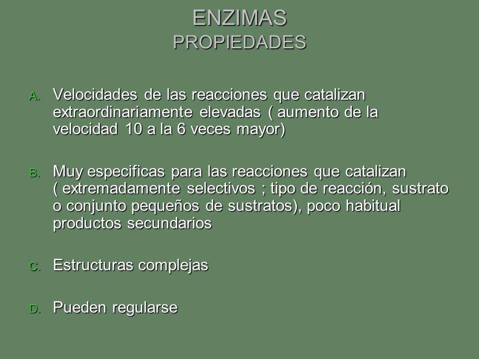 ENZIMAS PROPIEDADES Velocidades de las reacciones que catalizan extraordinariamente elevadas ( aumento de la velocidad 10 a la 6 veces mayor)