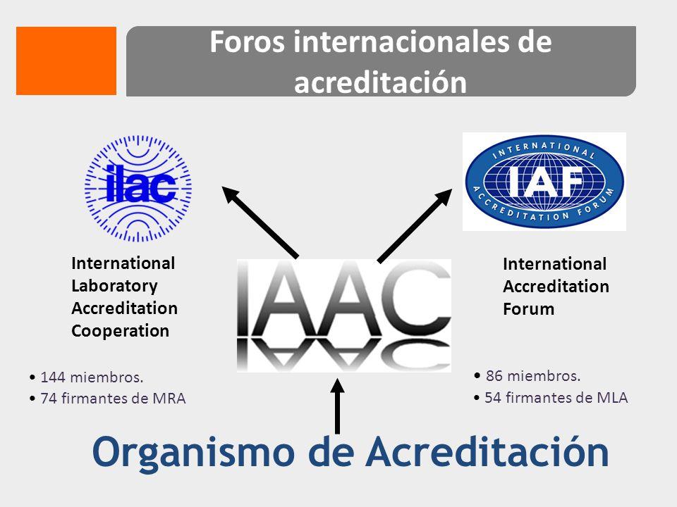 Foros internacionales de acreditación