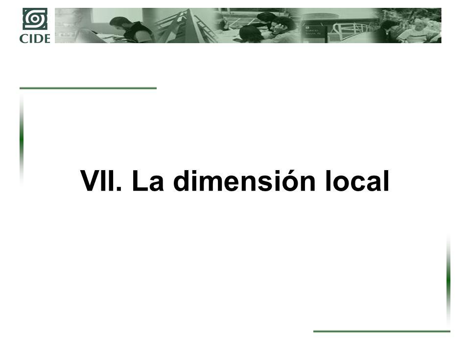 VII. La dimensión local