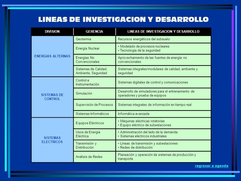 LINEAS DE INVESTIGACION Y DESARROLLO