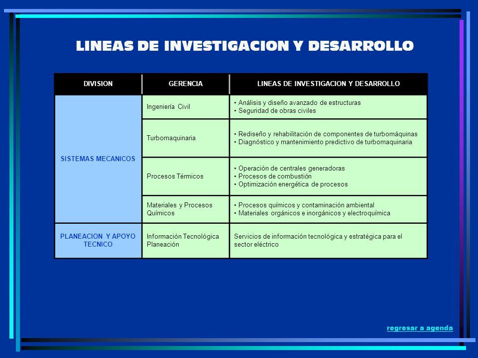 LINEAS DE INVESTIGACION Y DESARROLLO PLANEACION Y APOYO TECNICO