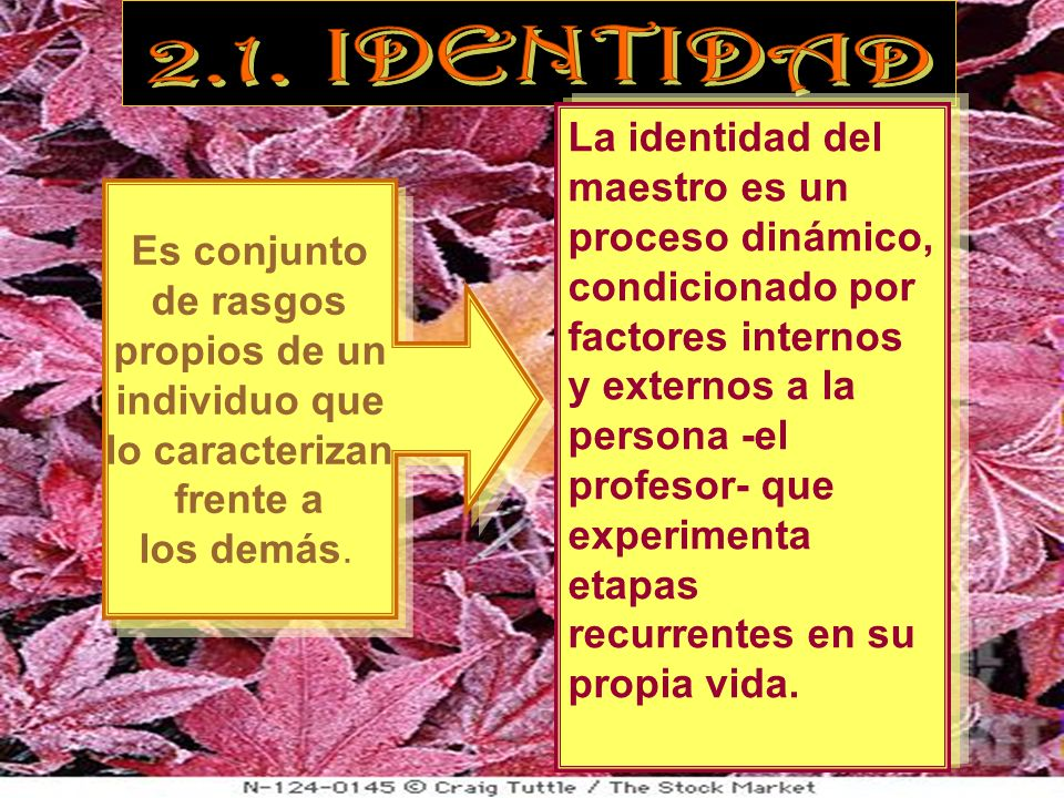 2.1. IDENTIDAD
