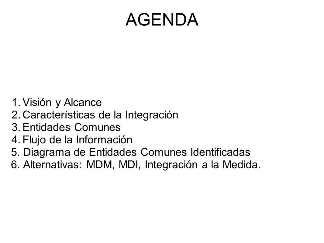 AGENDA Visión y Alcance Características de la Integración