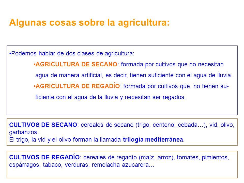 Algunas cosas sobre la agricultura: