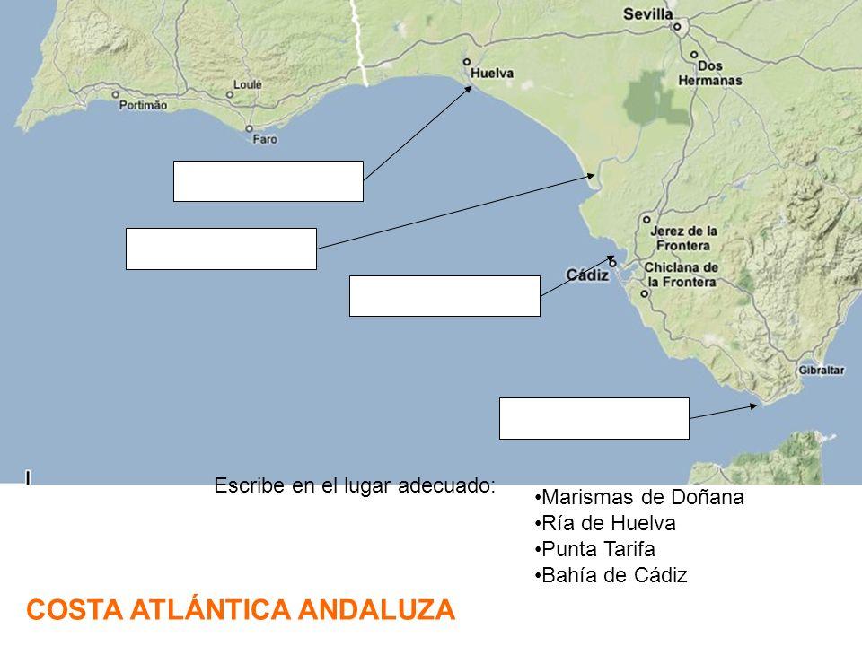 COSTA ATLÁNTICA ANDALUZA