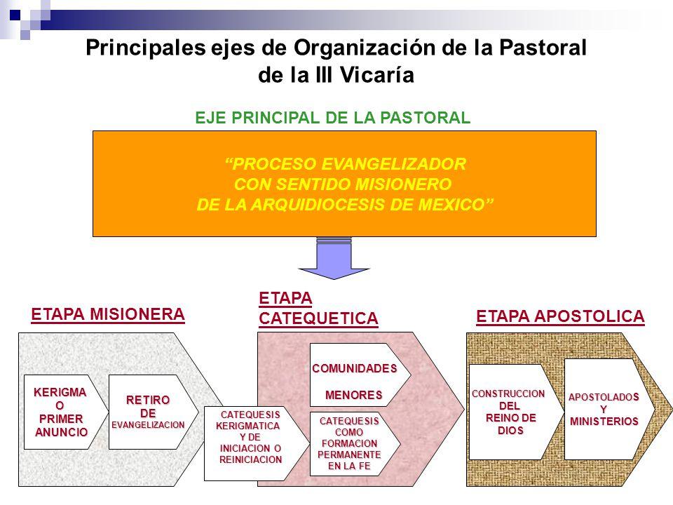 Principales ejes de Organización de la Pastoral de la III Vicaría